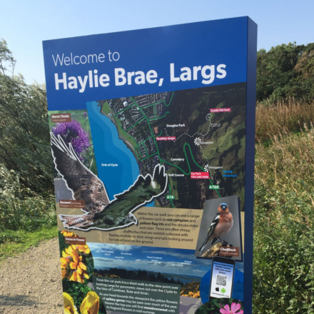 totem sign, Haylie Brae feat img