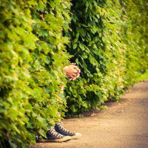 man hiding in hedge, only hands & feet visible
